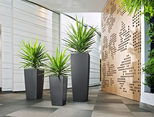 Indoor Planters Manufacturer in Delhi