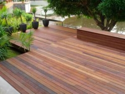 Wood Pine Decking and Flooring Manufacturer in Delhi