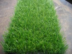 25mm Artificial Grass Manufacturer in Delhi