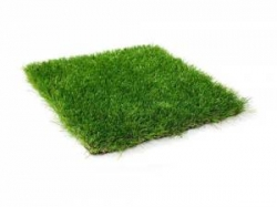 35mm Artificial Grass Manufacturer in Delhi